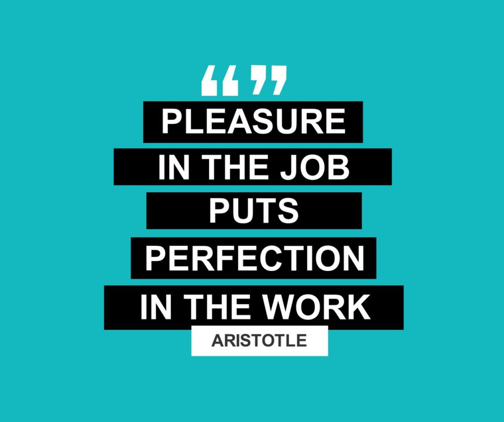 Pleasure in the job puts perfection in the work - Aristotle